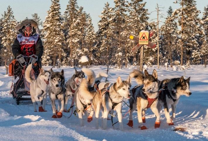 Foto: Björn Andersson